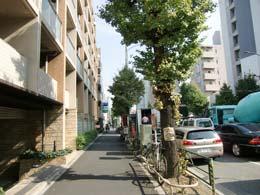 ミルーム目黒通り_エントランス前(左側)