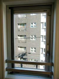 アゼリア学芸大学_リビングダイニングの窓