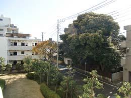 目黒台スカイマンション_バルコニーから見た景色(左側)